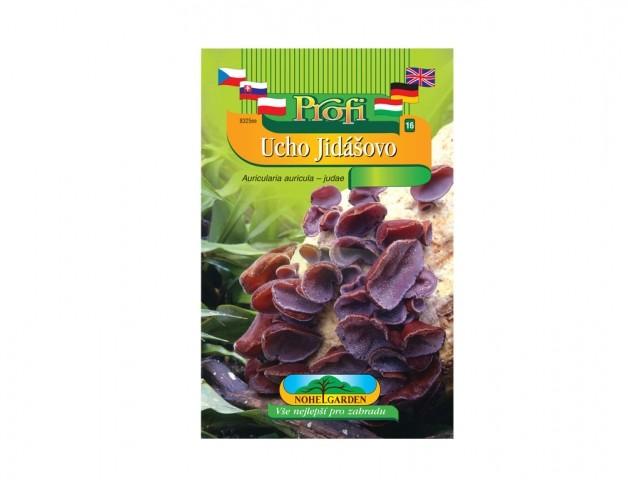 Ucho Jidášovo (Auricularia auricula) Ucho Jidášovo je dřevokazná houba v přírodě rostoucí na větvích bezu černého (zejména po dešti). Obsahuje látky