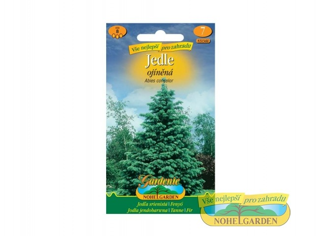 Jedle ojíněná - Abies concolor Počet semen: cca 8 ksOblíbený rychle rostoucí jehličnan