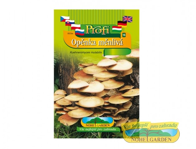 Opěnka měnlivá (Kuehneromyces mut) Opěnka měnlivá je vyníkající dřevokazná houba rostoucí v trsech na odumřelých pařezech a kmenech listnatých stromů. Je vhodná do polévek
