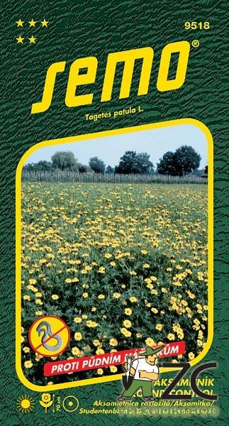 Aksamitník rozkladitý - Ground Control 2 g Tagetes patula L. / Aksamietnica rozložitáPopis:Bohatě kvetoucí letnička s aromatickými listy určená na záhonové výsadby