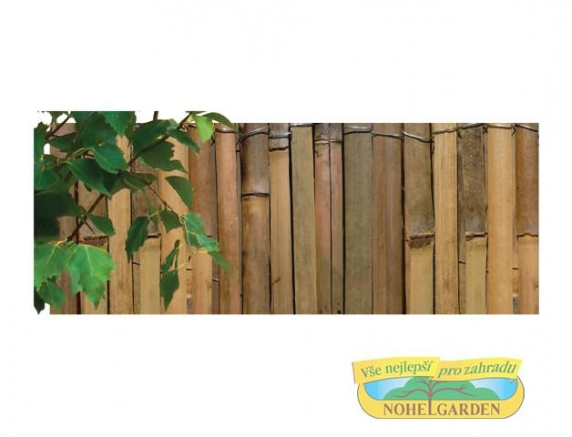 Rohož bambus štípaný 1.5 x 5 m Vhodný estetický doplňek do zahradPoužívá se např. do pergol jako stínovka
