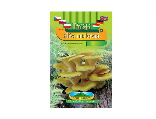 Hlíva miskovitá (Pleurotus cornucopiae) Hlíva miskovitá je dřevokazná houba původem z Japonska s účinky proti civilizačním onemocněním. Houba má nezaměnitelné aroma a blahodárné účinky glukanu pleuranu