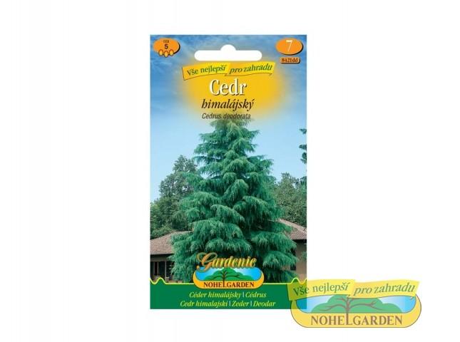 Cedr himalájský - Cedrus deodorata Počet semen: cca 5 ksCedr Himalájský je majestátní jehličnaté strom