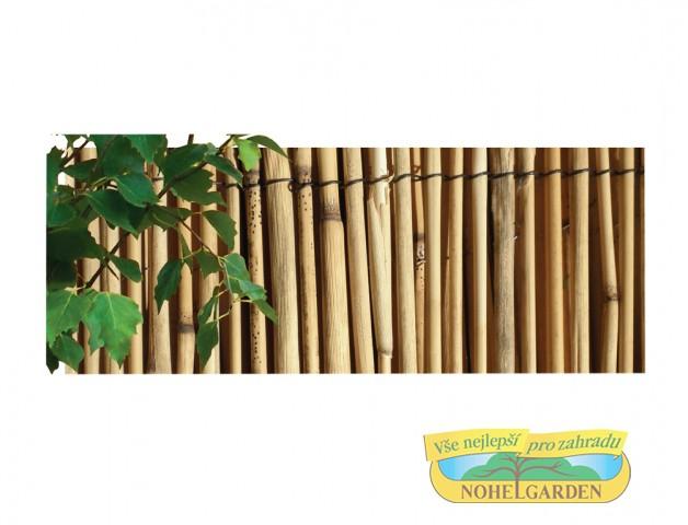 Rohož rákos 1.5 x 5 m Rohož- materiál:rákos- výška: 1.5 m - délká: 5 m- rákos je přírodní materiál