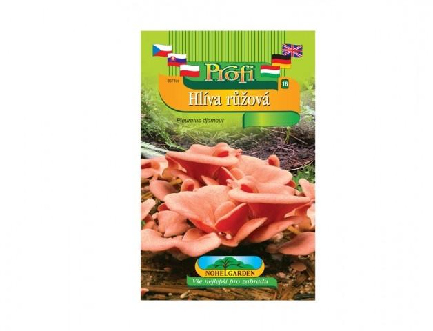 Hlíva růžová (Pleurotus djamour) Hlíva růžová je dřevokazná houba původem z Jihovýchodní Asie s účinky proti civilizačním chorobám. Vyznačuje se výbornou chutí. Obsahuje glukany