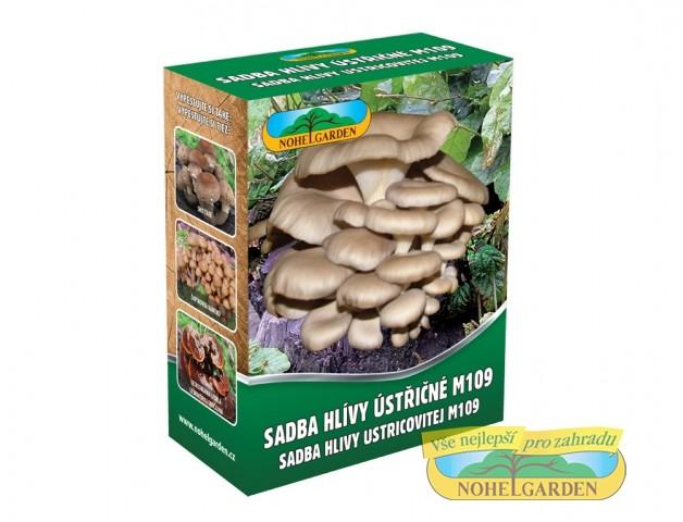 Sadba HLÍVA ÚSTŘIČNÁ 250 ml Hlíva ústřičná je dřevokazná houba rostoucí převážně na listnatých stromech. Ze stromů si bere živiny