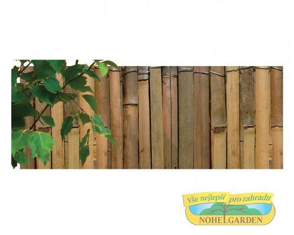 Rohož bambus štípaný 1 x 5 m Rohož- materiál:bambus štípaný - výška: 1 m - délká: 5 m- vhodný estetický doplňek do zahrad- používá se např. do pergol jako stínovka